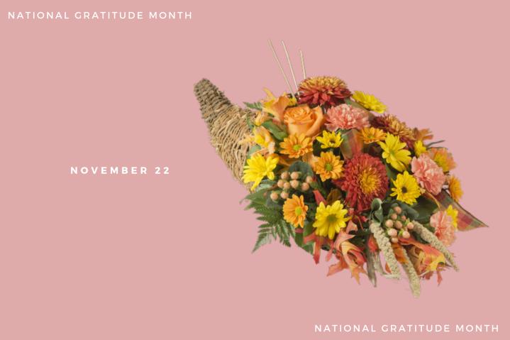 Gratitude – 17 thru22