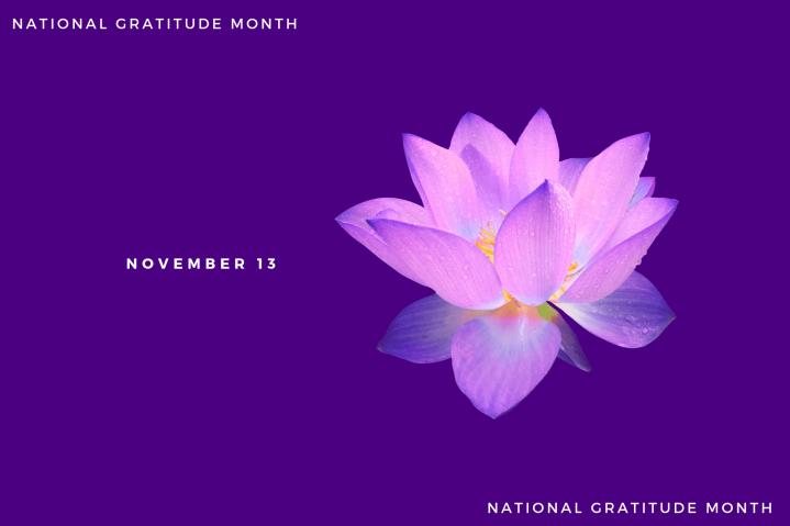 Gratitude – Day13