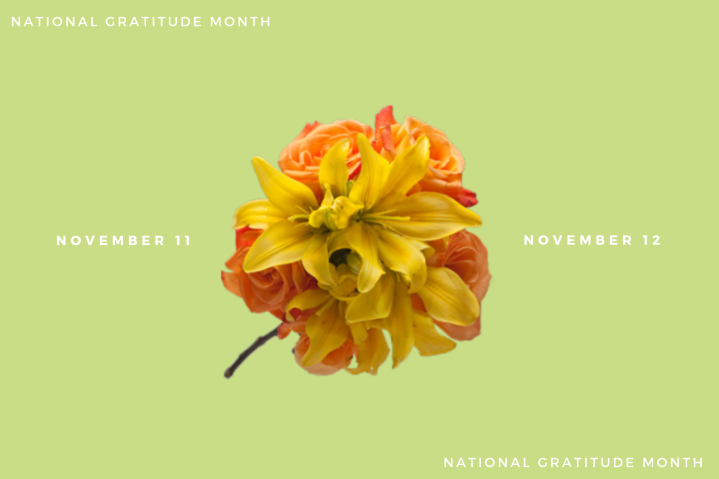 Gratitude- Day 11 and12