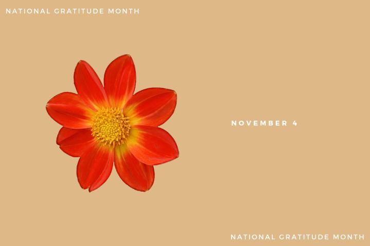 Gratitude – Day4