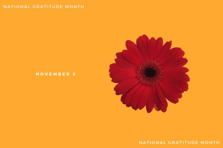 Gratitude – Day5
