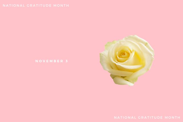 Gratitude – Day3
